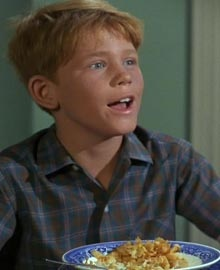 Ron Howard nei panni di Opie - Andy Griffith Show