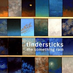 http://www.ondarock.it/images/cover/tindersticks_thesomethingrain_1_1330287996.jpg