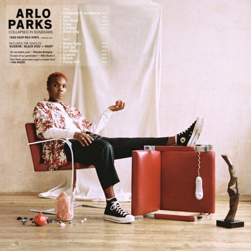 Arlo Parks vince il Mercury Prize 2021