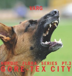 Varg annuncia il nuovo album in uscita il 27 Marzo per Northern Electronics