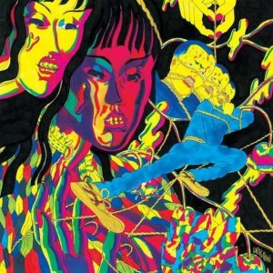Thee Oh Sees: nuova, temporanea line-up
